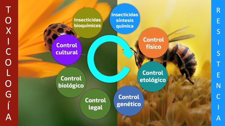 Reconfiguración del Manejo Integrado de Plagas Agrícolas